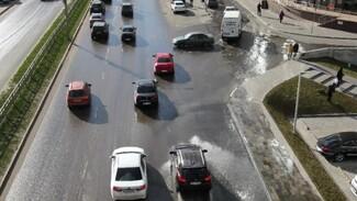 Воронежские власти вновь объяснили потоп на Шишкова засором