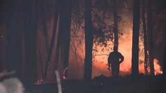 События недели: огненный шторм и открытие путепровода на 9 Января в Воронеже