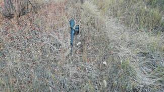 Воронежский бизнесмен избежал срока за убийство водителя на охоте