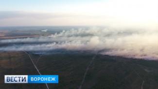 Санврачи проверили качество воздуха в Воронеже после крупного пожара на военном полигоне