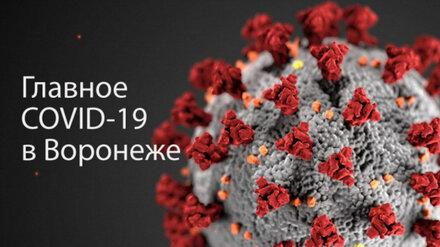 Воронеж. Коронавирус. 30 августа