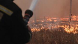 Тушить горящую Воронежскую область прилетит ещё один самолёт-амфибия