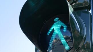 В Воронеже переходившую дорогу женщину сбил водитель автобуса