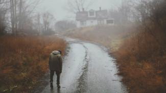 Пропавшего в воронежском селе мальчика со слабоумием нашли живым