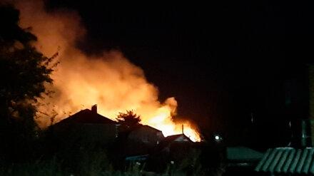Жителей посёлка под Воронежем напугало зарево ландшафтного пожара