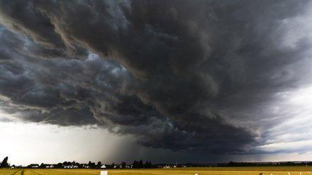 Жителей Воронежской области предупредили о надвигающихся сильных дождях и грозах