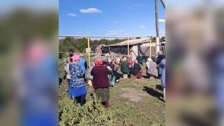 Родные и соседи собрались у дома убитой в воронежском селе семьи: появилось видео
