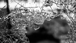 В Воронежской области иномарка врезалась в дерево: двое в больнице