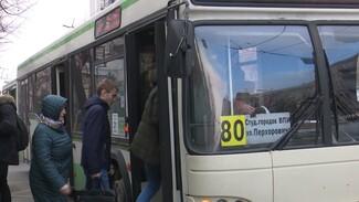 Мэр поторопил воронежских перевозчиков с закупкой новых маршруток