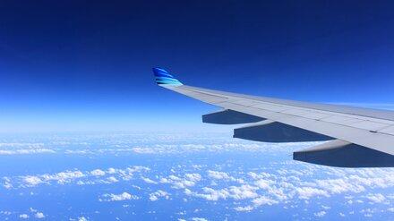 Воронеж оказался вне списка городов, откуда на первом этапе откроют рейсы за границу