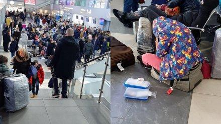 Роспотребнадзор призвал воронежцев судиться из-за задержки рейса на Гоа