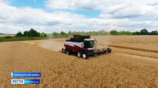 «Получаем удовольствие от работы». Как семья фермеров развила масштабное хозяйство в Воронежской области