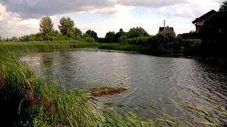 «Река превратилась в каскад озёр». Как за десятилетия изменилась воронежская Усманка