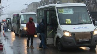 Мэрия Воронежа выставила на торги 120 городских маршрутов