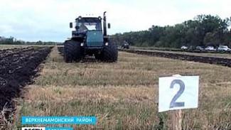 Лучшие трактористы выяснили, у кого борозда ровней