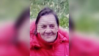 Воронежская пенсионерка исчезла после поездки на автобусе