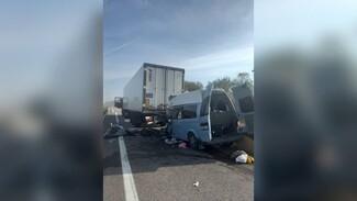 Пассажиры и водитель микроавтобуса пострадали после ДТП с грузовиком в Воронежской области