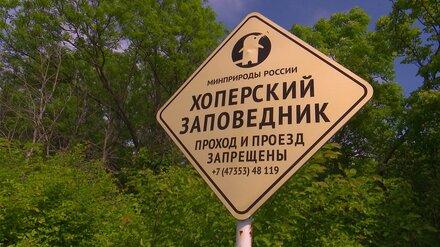 В заповеднике Воронежской области создадут экотропу для наблюдения за выхухолью