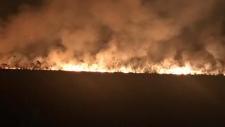 Спасатели потушили крупный ландшафтный пожар, напугавший жителей воронежского микрорайона