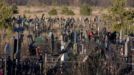 Восемь биотуалетов установят на воронежских кладбищах