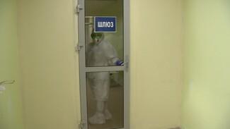В Воронежской области коронавирус подтвердился ещё у 633 пациентов