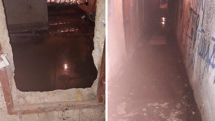 Подвал высотки в Воронеже затопило фекалиями