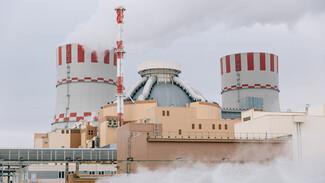 Нововоронежская АЭС обеспечила полмиллиарда дополнительной выручки
