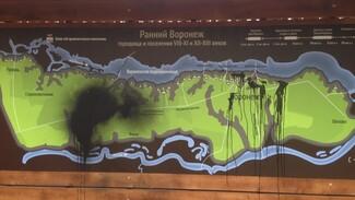 «Нелюди» облили чёрной краской входной знак Большой воронежской экотропы