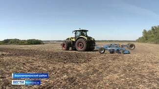 «Работаем день и ночь». Как аграрии развивают сельское хозяйство Воронежской области