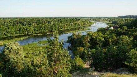 Под Воронежем у частников отнимут земли на берегу реки