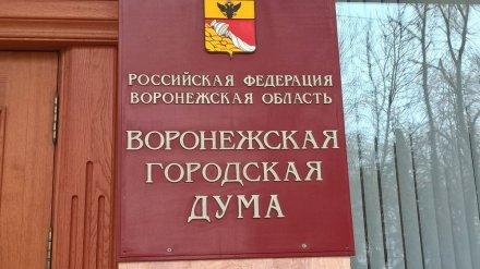 Городская дума приняла бюджет Воронежа на 2019 год