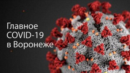Воронеж. Коронавирус. 15 ноября