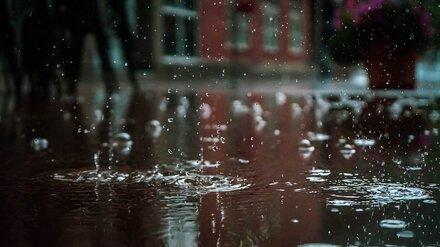 Воронежскую область зальёт дождями