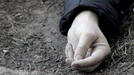 В Воронеже на улице прохожие нашли тела 2 мужчин