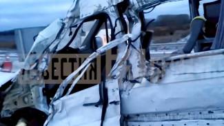 Водитель микроавтобуса попал под следствие за смертельное ДТП на воронежской трассе