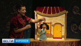 Куклы посреди войны. Театр из украинского города представил в Воронеже детский спектакль