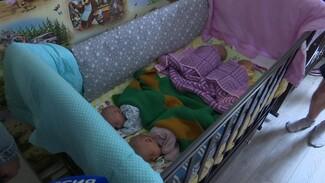 Власти пообещали помочь родителям появившейся на свет четверни под Воронежем