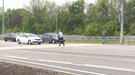 Дорожники пообещали три надземных перехода на смертельных участках при въезде в Воронеж