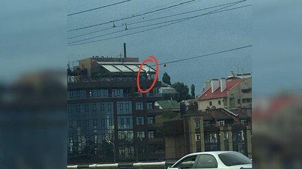 Воронежцы сообщили о застрявшем на троллее человеке