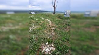 В воронежских Костёнках неизвестные разрушили каменный лабиринт