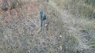 Дело воронежского бизнесмена об убийстве водителя на охоте вновь дошло до суда