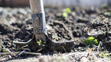 В Воронежской области мужчину осудили на 16 лет за убитого и закопанного друга