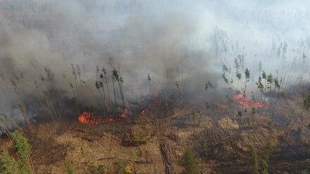 Следователи проверят чиновников после пожаров в шести районах Воронежской области
