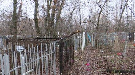 Воронежцев из-за угрозы коронавируса попросили не посещать кладбища
