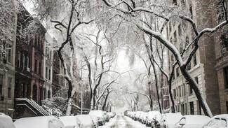 Рабочая неделя встретит воронежцев теплом и мокрым снегом