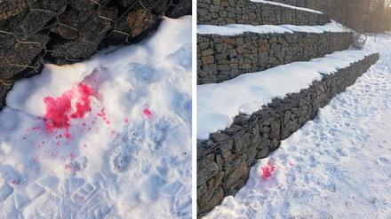 Воронежцев предупредили о разлитой по снегу отраве для собак