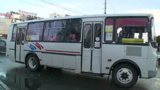 Число маршруток на воронежских улицах сократилось на четверть из-за ковида