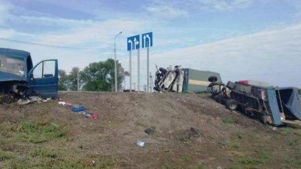 В Воронежской области 50-летний водитель погиб при столкновении двух грузовиков