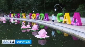 Свето-музыкальное шоу и арт-парад. Что ждёт воронежцев на фестивале «Город-сад 2018»