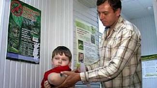 Вирус бешенства снова гуляет по Воронежскому региону